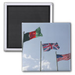UK Flag between the Afghan and US flags 2 Inch Square Magnet