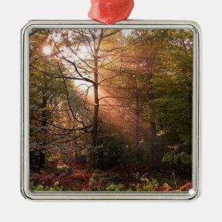 UK. Forest of Dean. Sunbeam penetrating a Metal Ornament