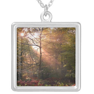 UK. Forest of Dean. Sunbeam penetrating a Personalized Necklace