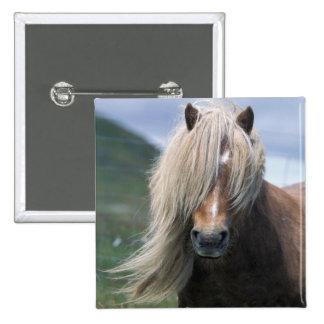 UK Scotland Shetland Islands Shetland pony Pins