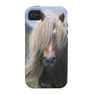 UK Scotland Shetland Islands Shetland pony iPhone 4 Covers