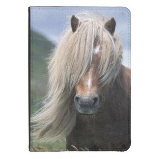 UK Scotland Shetland Islands Shetland pony Kindle 4 Case