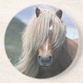 UK Scotland Shetland Islands Shetland pony Coaster