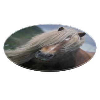UK, Scotland, Shetland Islands, Shetland pony Cutting Boards