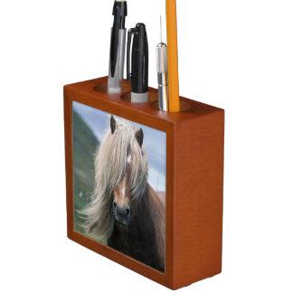 UK Scotland Shetland Islands Shetland pony Pencil/Pen Holder