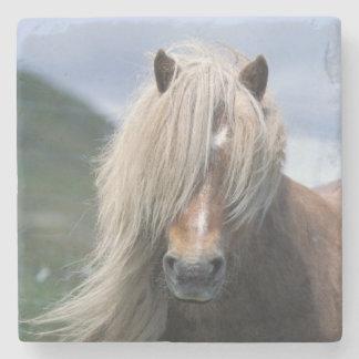 UK Scotland Shetland Islands Shetland pony Stone Coaster