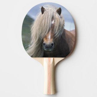 UK Scotland Shetland Islands Shetland pony Ping-Pong Paddle
