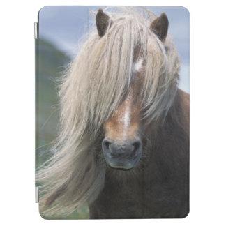 UK Scotland Shetland Islands Shetland pony iPad Air Cover