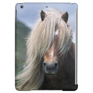 UK Scotland Shetland Islands Shetland pony iPad Air Cases