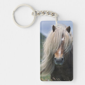 UK Scotland Shetland Islands Shetland pony Rectangle Acrylic Key Chains