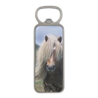 UK Scotland Shetland Islands Shetland pony Magnetic Bottle Opener