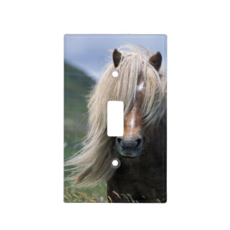 UK Scotland Shetland Islands Shetland pony Light Switch Cover