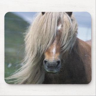 UK Scotland Shetland Islands Shetland pony Mousepad