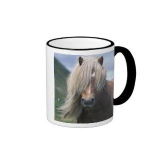 UK Scotland Shetland Islands Shetland pony Coffee Mug