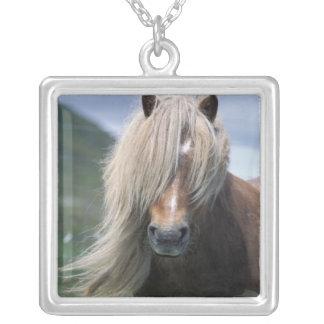 UK Scotland Shetland Islands Shetland pony Personalized Necklace