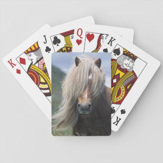UK Scotland Shetland Islands Shetland pony Card Deck