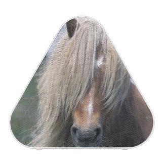 UK Scotland Shetland Islands Shetland pony Bluetooth Speaker