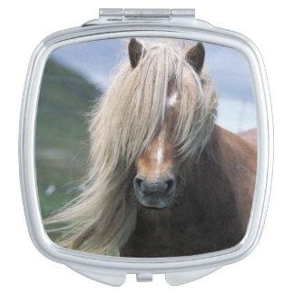 UK Scotland Shetland Islands Shetland pony Vanity Mirrors