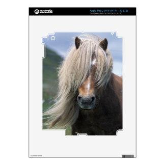 UK Scotland Shetland Islands Shetland pony Decal For iPad 3