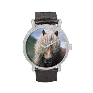 UK Scotland Shetland Islands Shetland pony Wrist Watches
