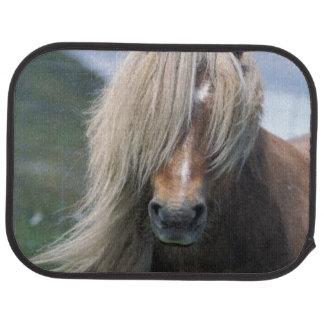 UK Scotland Shetland Islands Shetland pony Car Mat