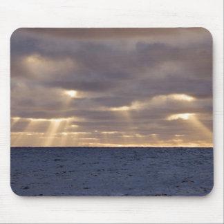 UK Territory, South Georgia Island, Scotia Sea. Mouse Pad