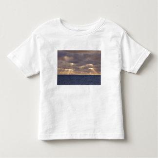 UK Territory, South Georgia Island, Scotia Sea. Toddler T-shirt