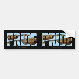 Uke PRIDE Bumper Sticker