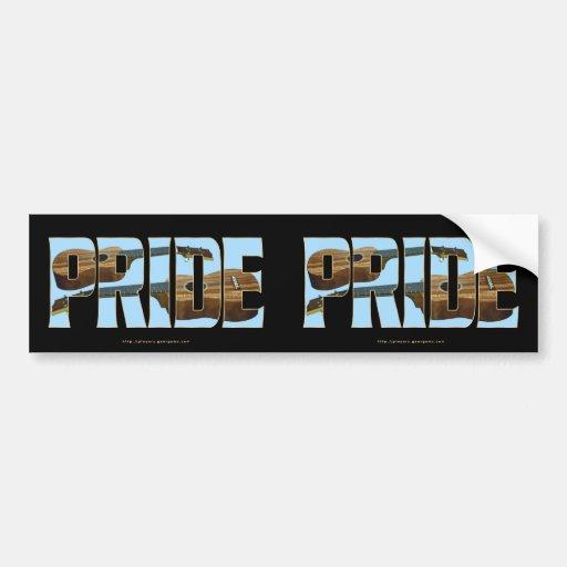 Uke PRIDE Car Bumper Sticker