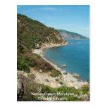 Ukraine Black Sea beach Post Card