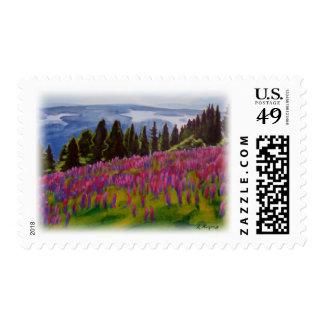'Ukraine' Postage Stamps