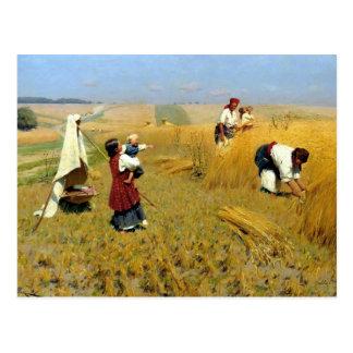 Ukrainian Harvesters Postcard