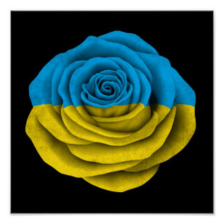 Ukrainian Rose Flag on Black Print