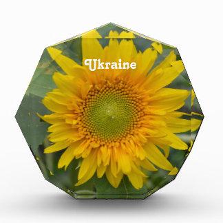 Ukranian Sunflowers Acrylic Award