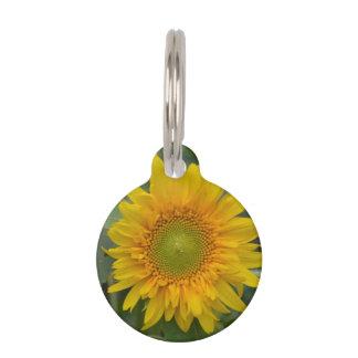 Ukranian Sunflowers Pet ID Tag
