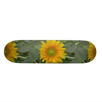 Ukranian Sunflowers Skateboard Deck