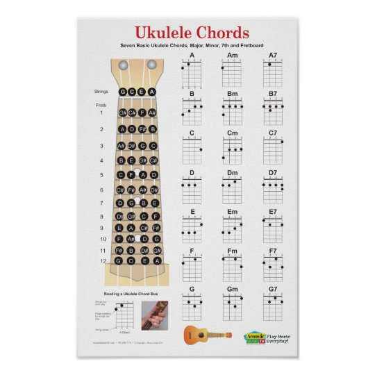 Ukulele Chords Finger Chart and Fretboard Poster | Zazzle