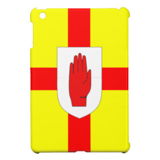 Ulster Flag iPad Mini Covers