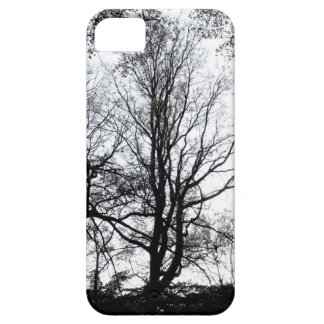Último árbol casi estéril B W del otoño del Centra iPhone 5 Case-Mate Fundas