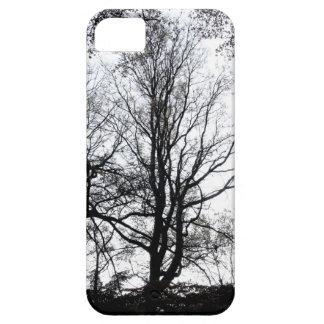 Último árbol casi estéril B&W del otoño del iPhone 5 Fundas