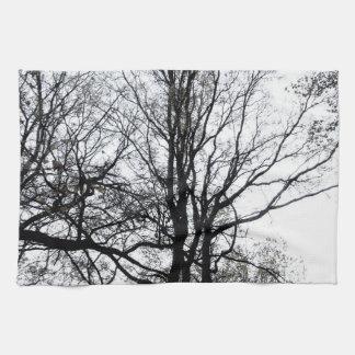 Último árbol casi estéril B&W del otoño del Toallas De Mano
