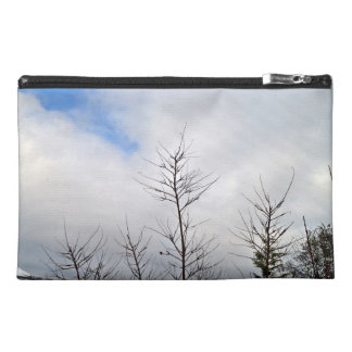 Último paisaje del invierno con los árboles secos