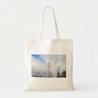 Último paisaje del invierno con los árboles secos bolsas