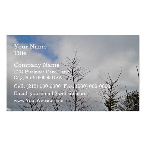 Último paisaje del invierno con los árboles secos tarjetas de visita