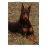 Último perro guardián tarjeta de felicitación