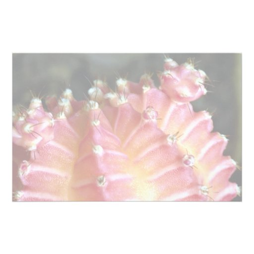 Ultra close-up of a pink cactus Desert Stationery