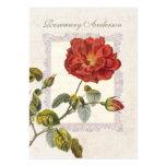 Ultra Elegant Old Fashioned Red Rose for Gardener Large Business Cards (Pack Of 100)
