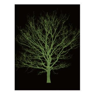 Ultraviolet Fall Tree Postcard