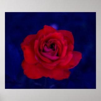 Ultraviolet Rose Print