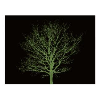 Ultraviolet Tree Postcard